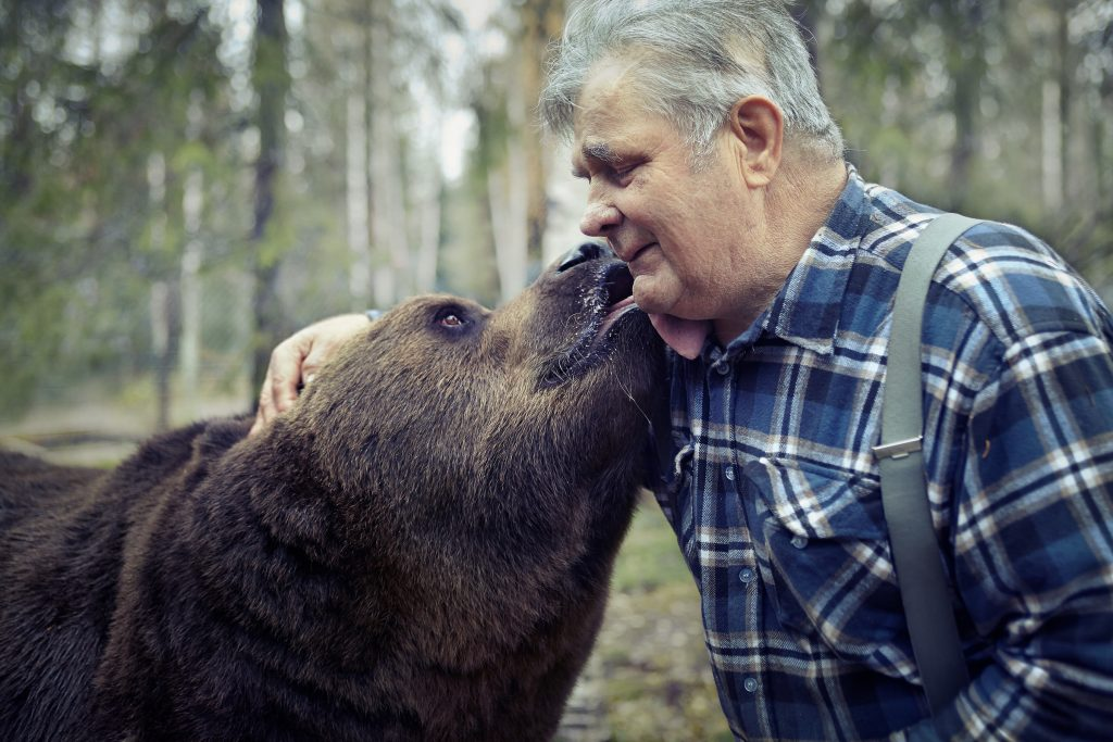Man in Finland being licked by grizzly bear photo by Todd Antony