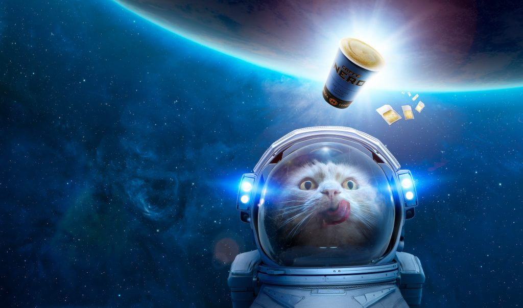 cat in space wearing spacesuit photo by Todd Antony