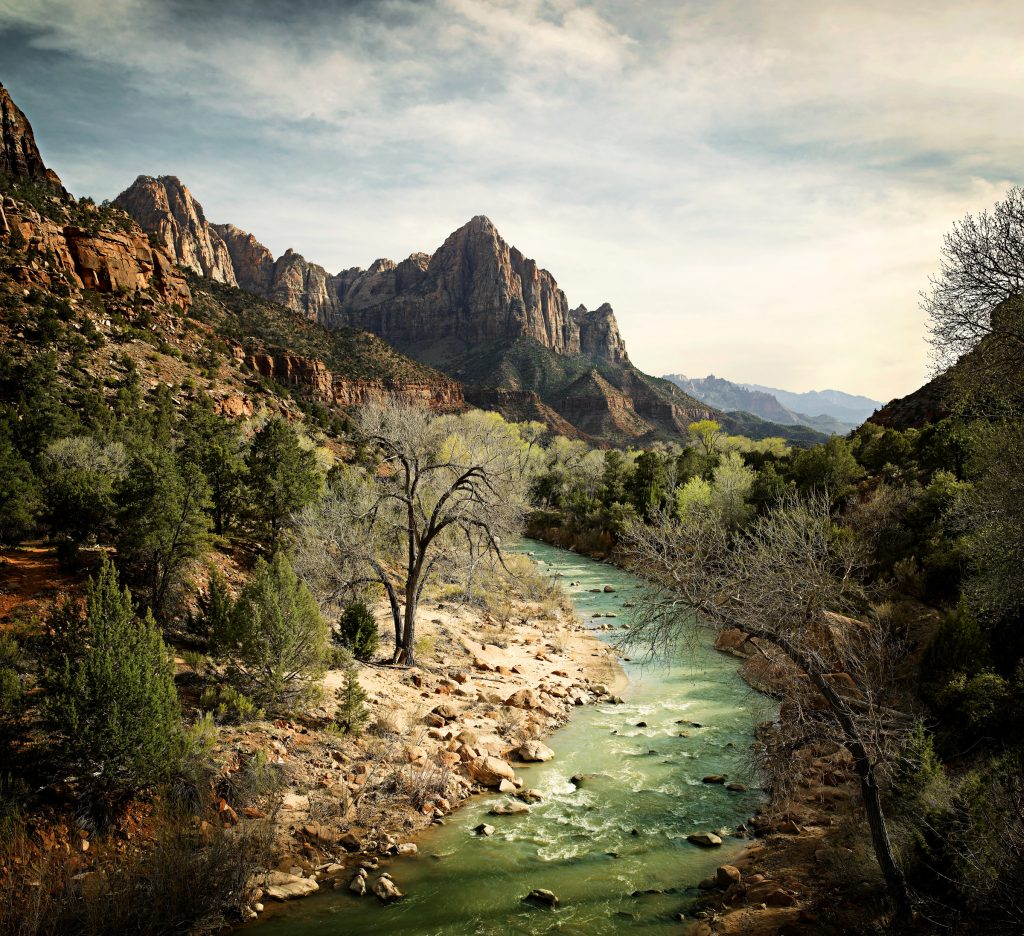 river running through mountains in Zion national park photo by Todd Antony
